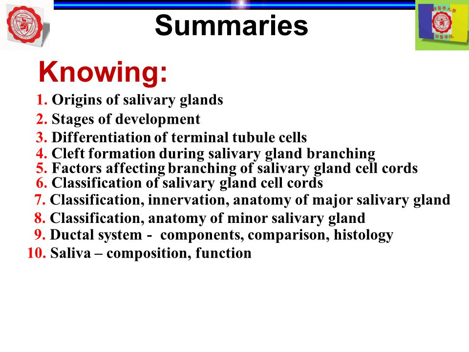 Summaries Knowing: 1. Origins of salivary glands