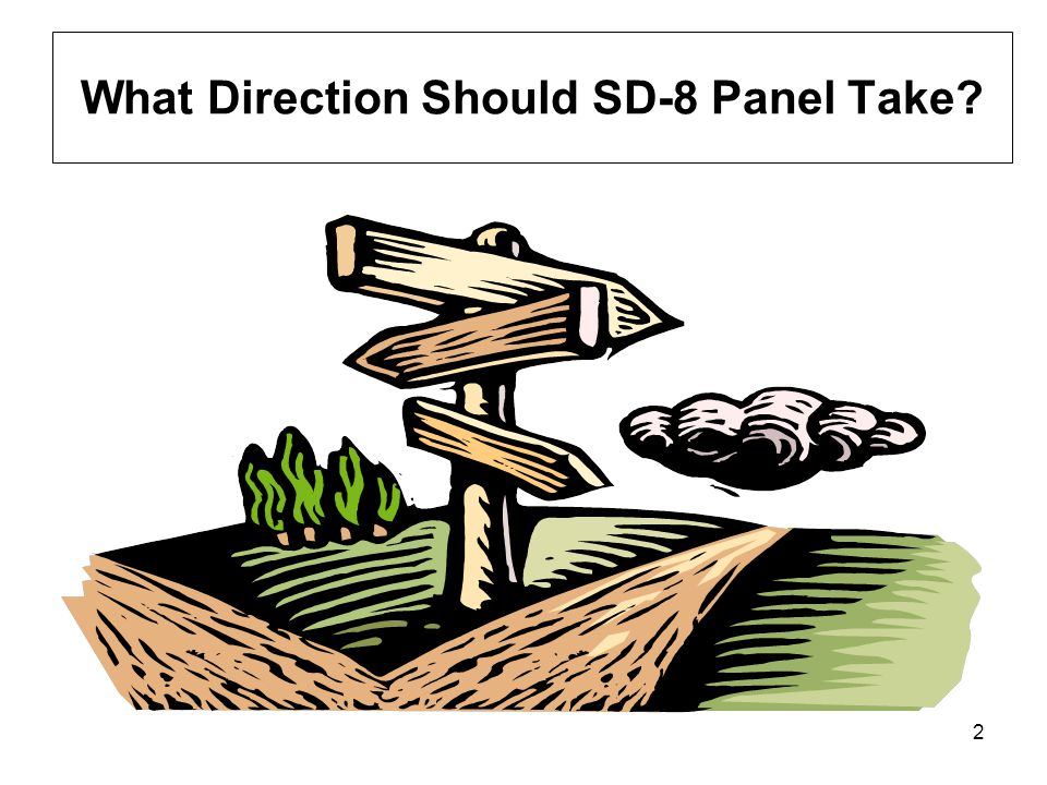 What Direction Should SD-8 Panel Take