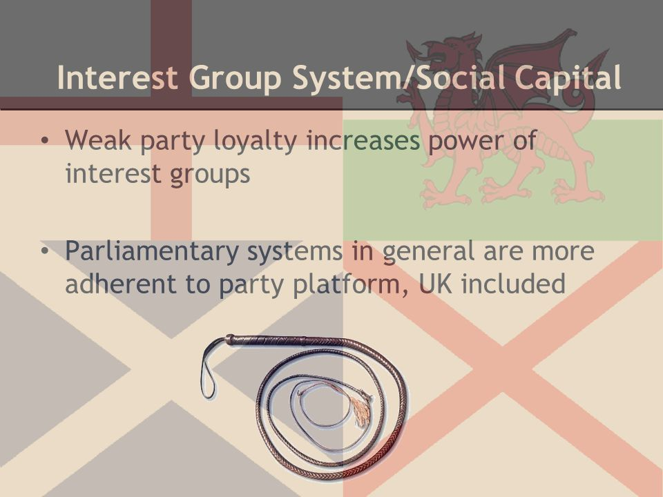 Interest Group System/Social Capital