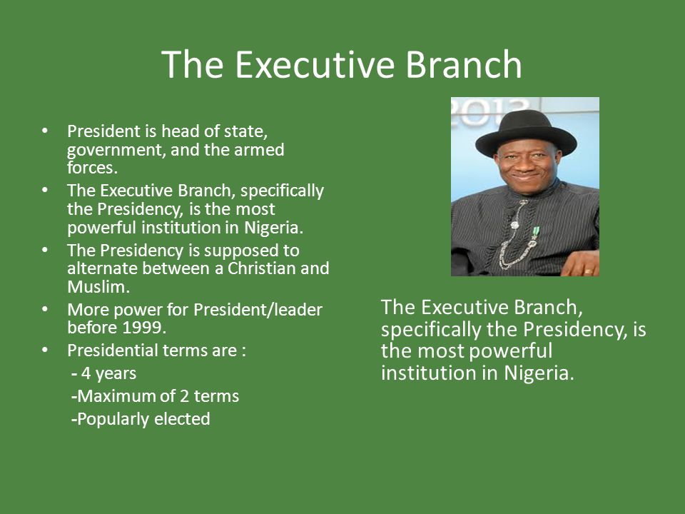 The Executive Branch The Executive Branch, specifically the Presidency, is the most powerful institution in Nigeria.
