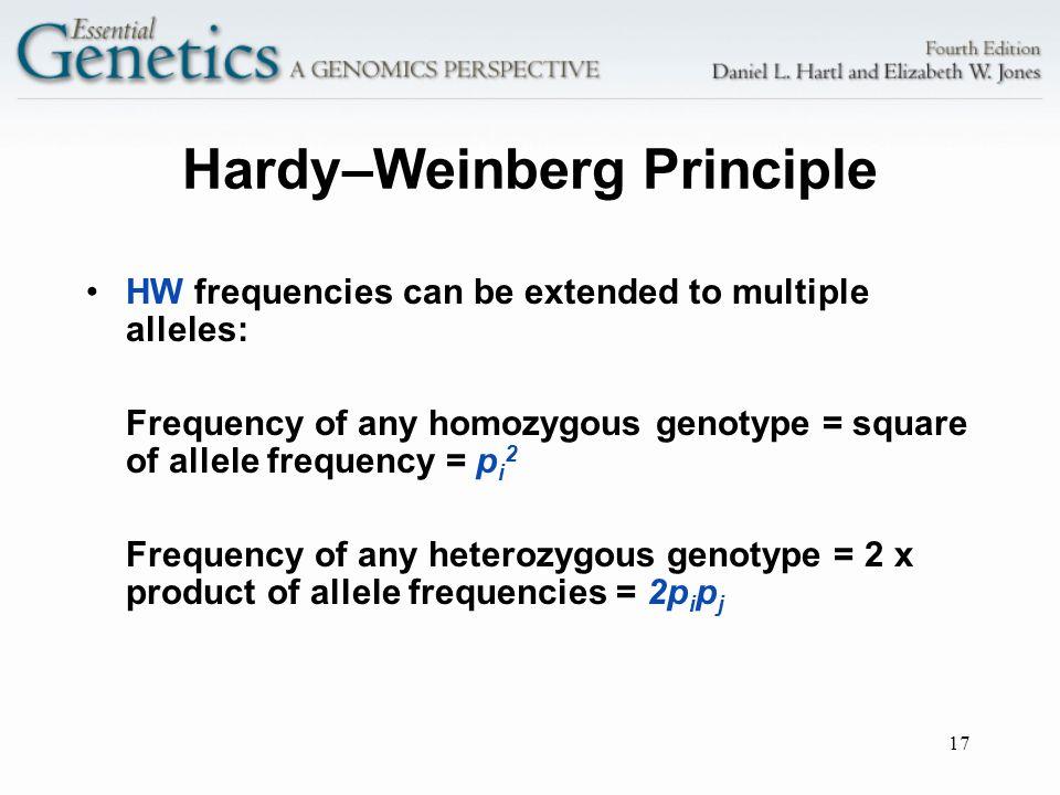 Hardy–Weinberg Principle