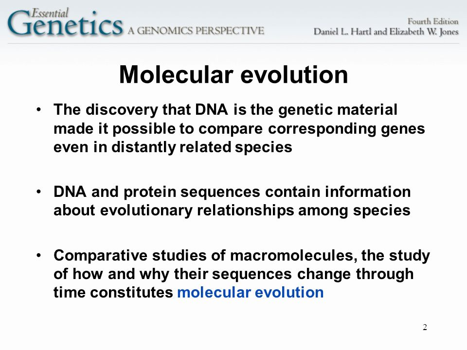 Molecular evolution The discovery that DNA is the genetic material made it possible to compare corresponding genes even in distantly related species.