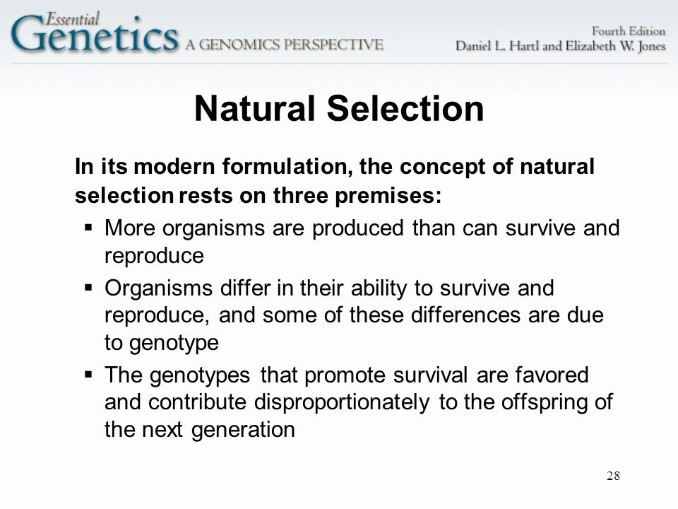 Natural Selection In its modern formulation, the concept of natural selection rests on three premises: