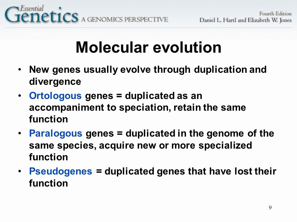 Molecular evolution New genes usually evolve through duplication and divergence.