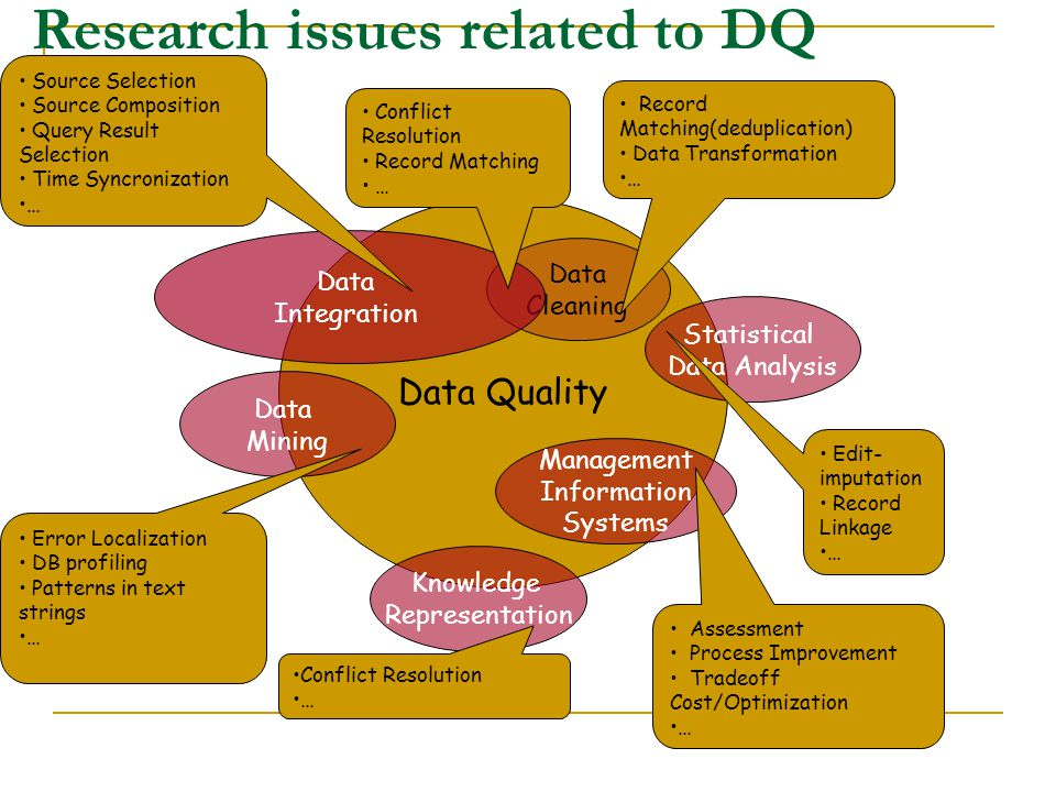 Research issues related to DQ
