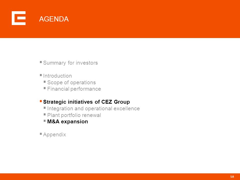 AGENDA Summary for investors Introduction Scope of operations