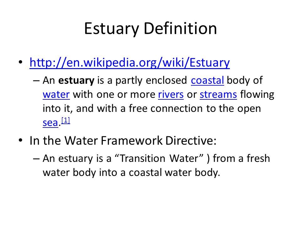 Estuary Definition http://en.wikipedia.org/wiki/Estuary