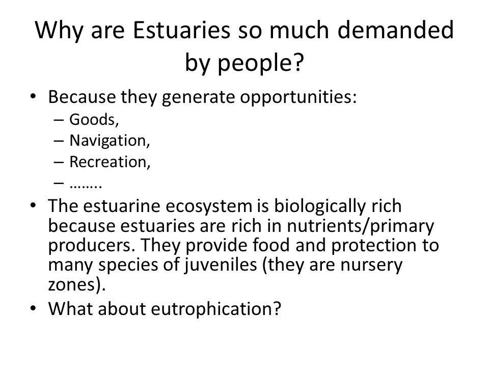 Why are Estuaries so much demanded by people