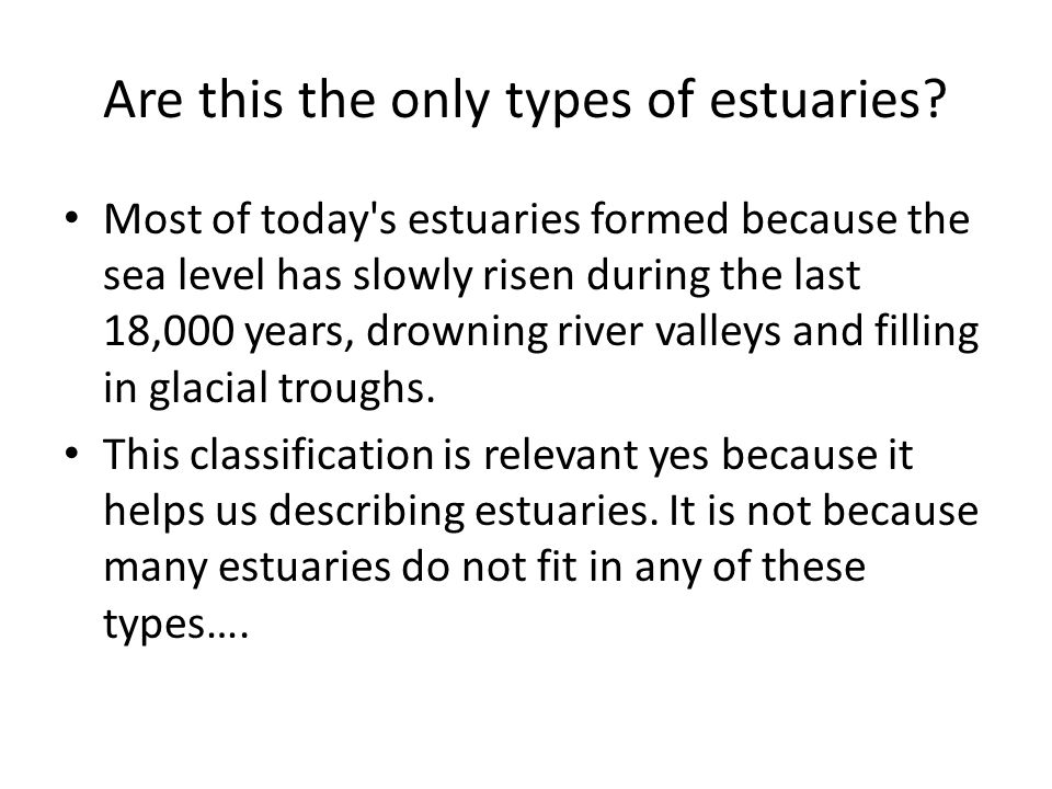 Are this the only types of estuaries