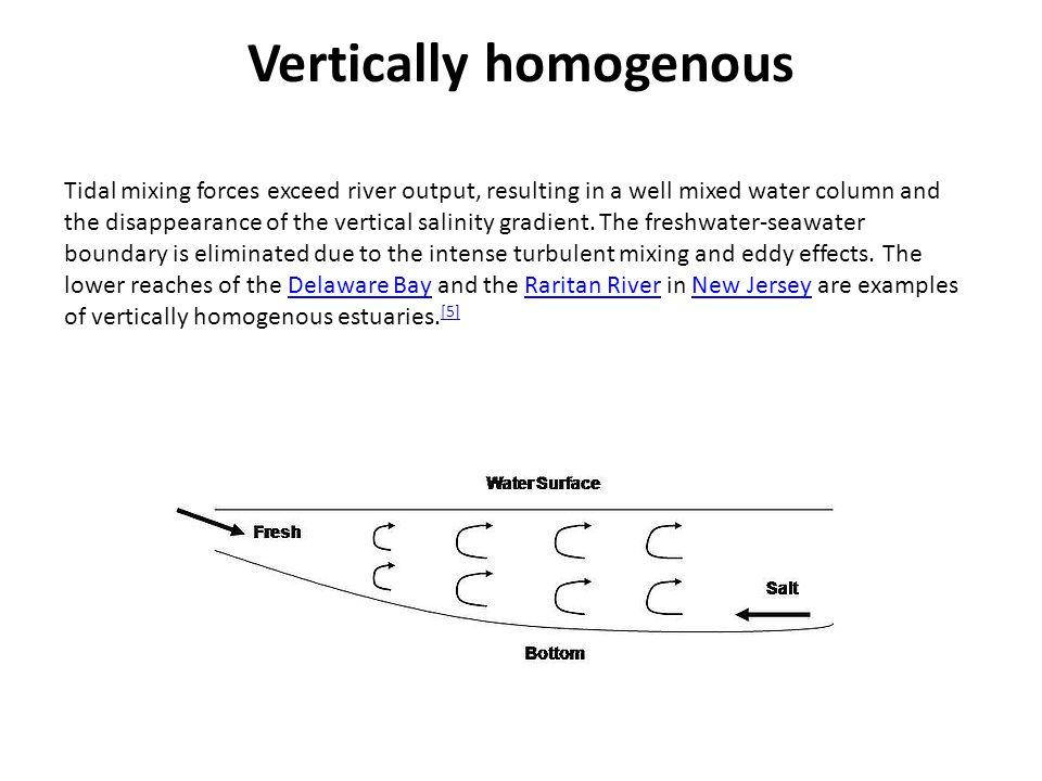 Vertically homogenous