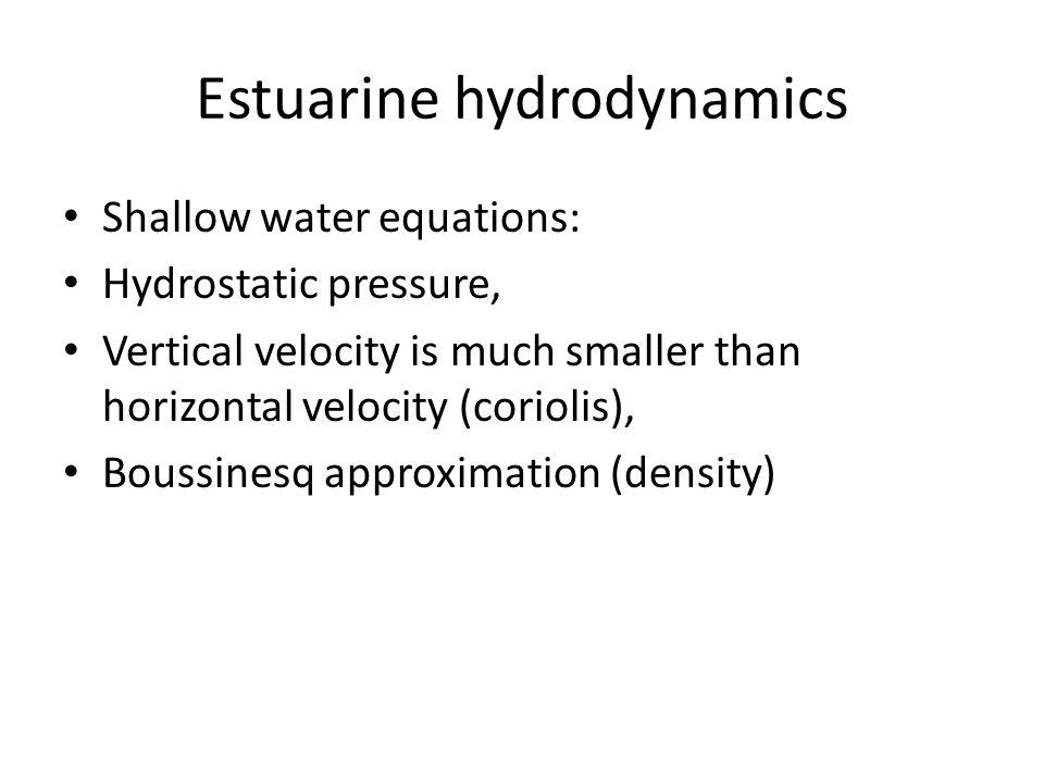 Estuarine hydrodynamics