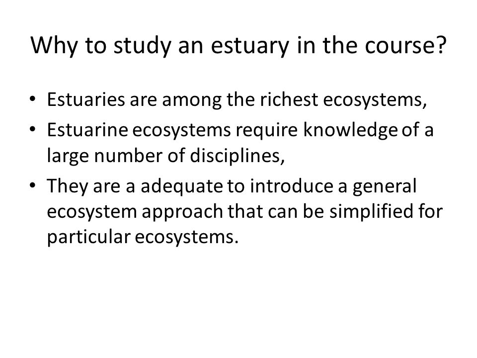 Why to study an estuary in the course