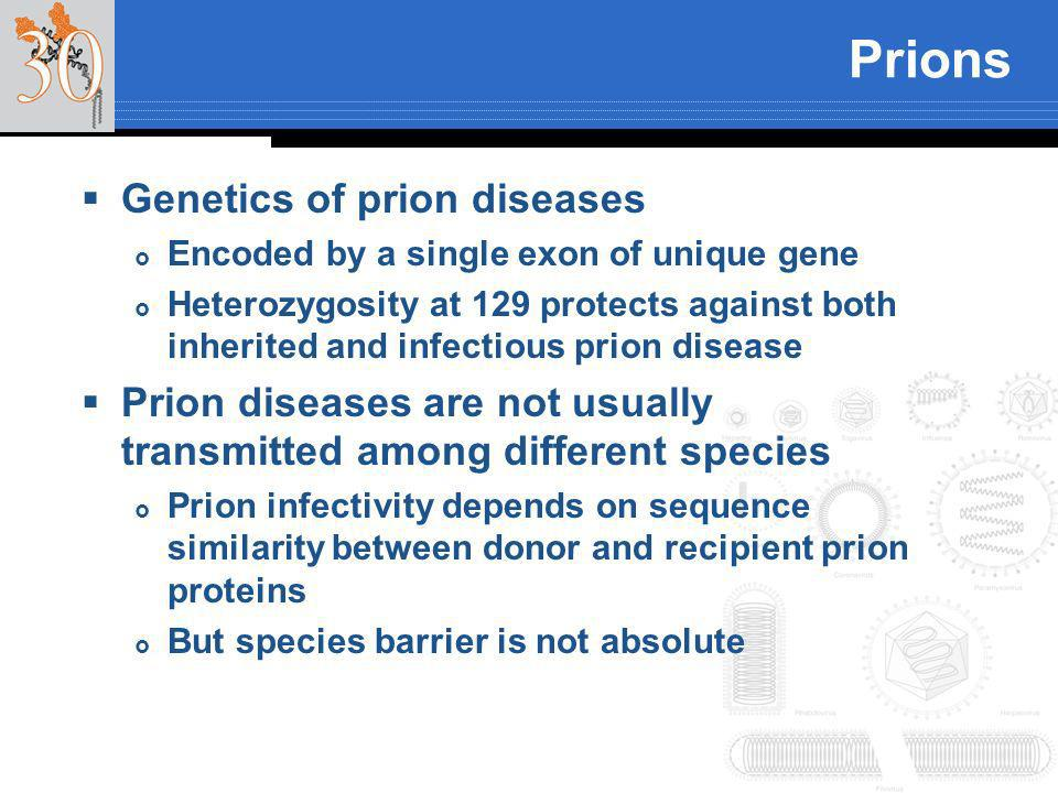 Prions Genetics of prion diseases