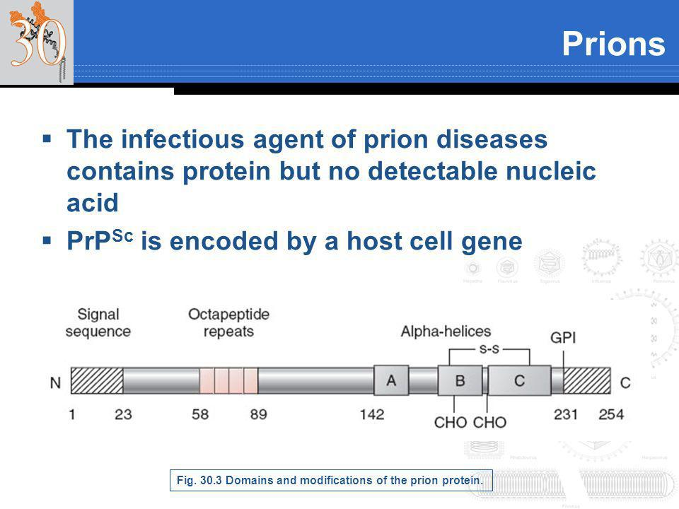 PrionsThe infectious agent of prion diseases contains protein but no detectable nucleic acid. PrPSc is encoded by a host cell gene.