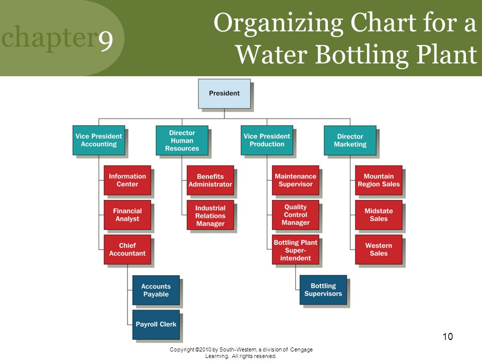 Organizing Chart for a Water Bottling Plant