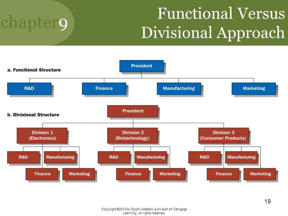 Functional Versus Divisional Approach