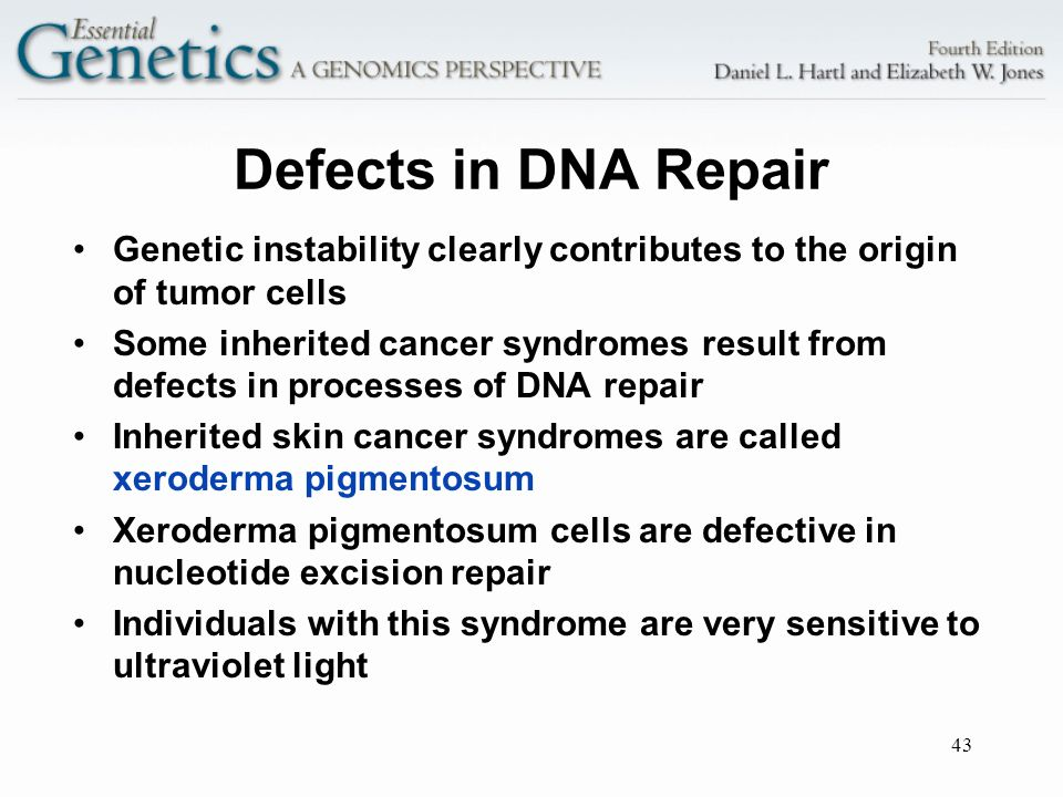 Defects in DNA Repair Genetic instability clearly contributes to the origin of tumor cells.