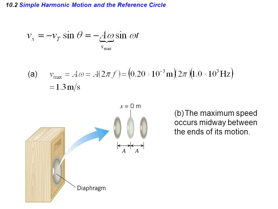 10.2 Simple Harmonic Motion and the Reference Circle