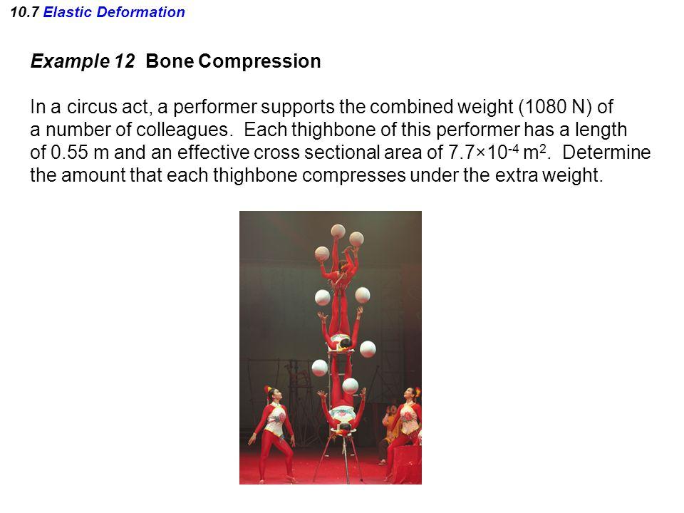 Example 12 Bone Compression