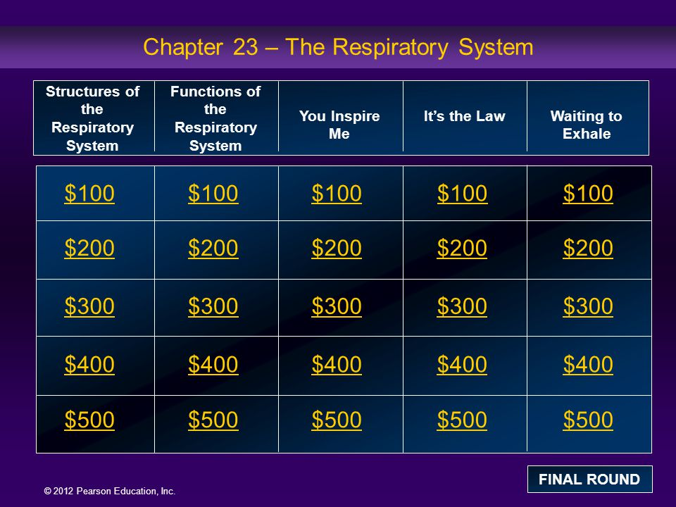 Chapter 23 – The Respiratory System