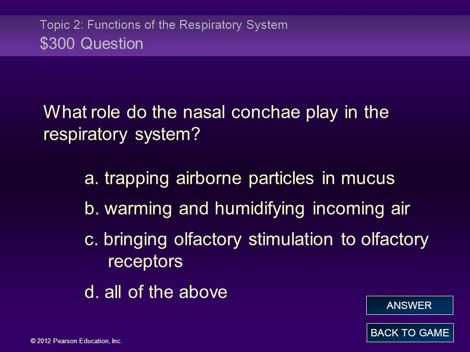 Topic 2: Functions of the Respiratory System $300 Question