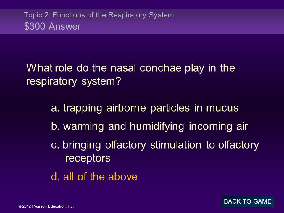 Topic 2: Functions of the Respiratory System $300 Answer
