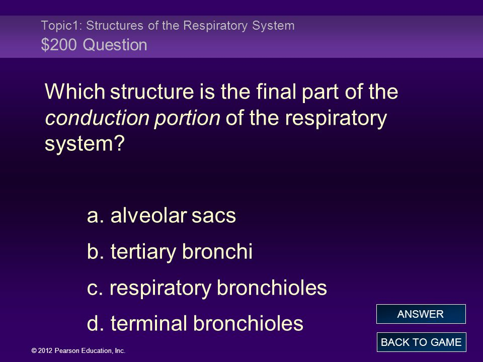 Topic1: Structures of the Respiratory System $200 Question