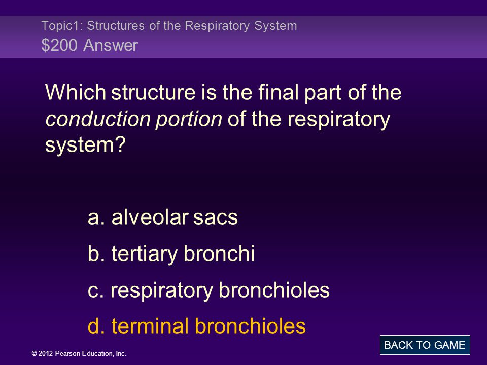 Topic1: Structures of the Respiratory System $200 Answer