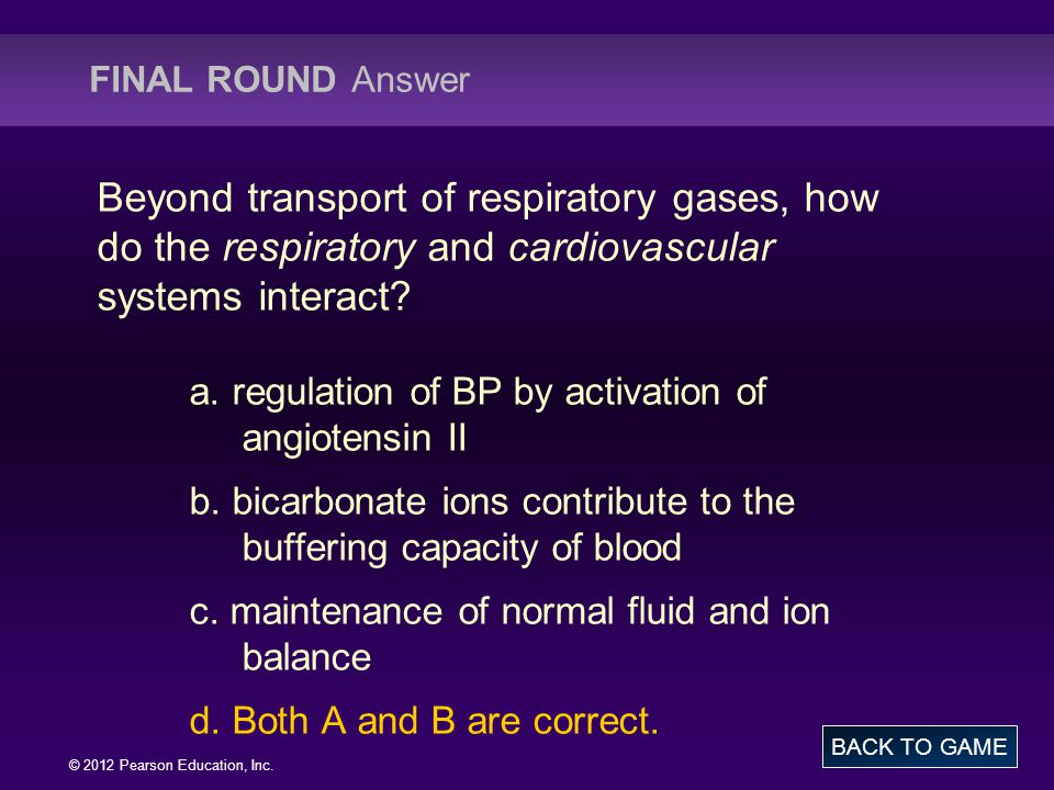 FINAL ROUND Answer Beyond transport of respiratory gases, how do the respiratory and cardiovascular systems interact