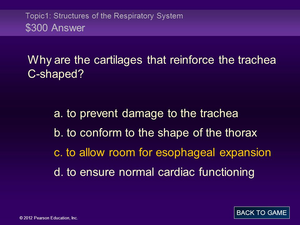 Topic1: Structures of the Respiratory System $300 Answer