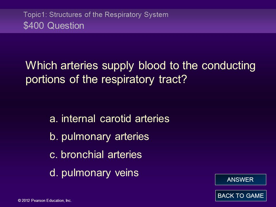Topic1: Structures of the Respiratory System $400 Question