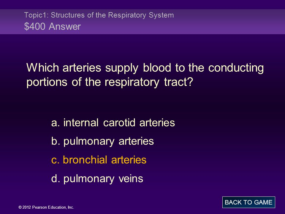 Topic1: Structures of the Respiratory System $400 Answer