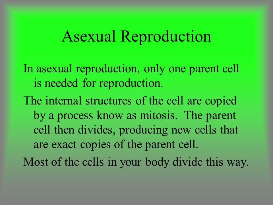 Asexual Reproduction In asexual reproduction, only one parent cell is needed for reproduction.