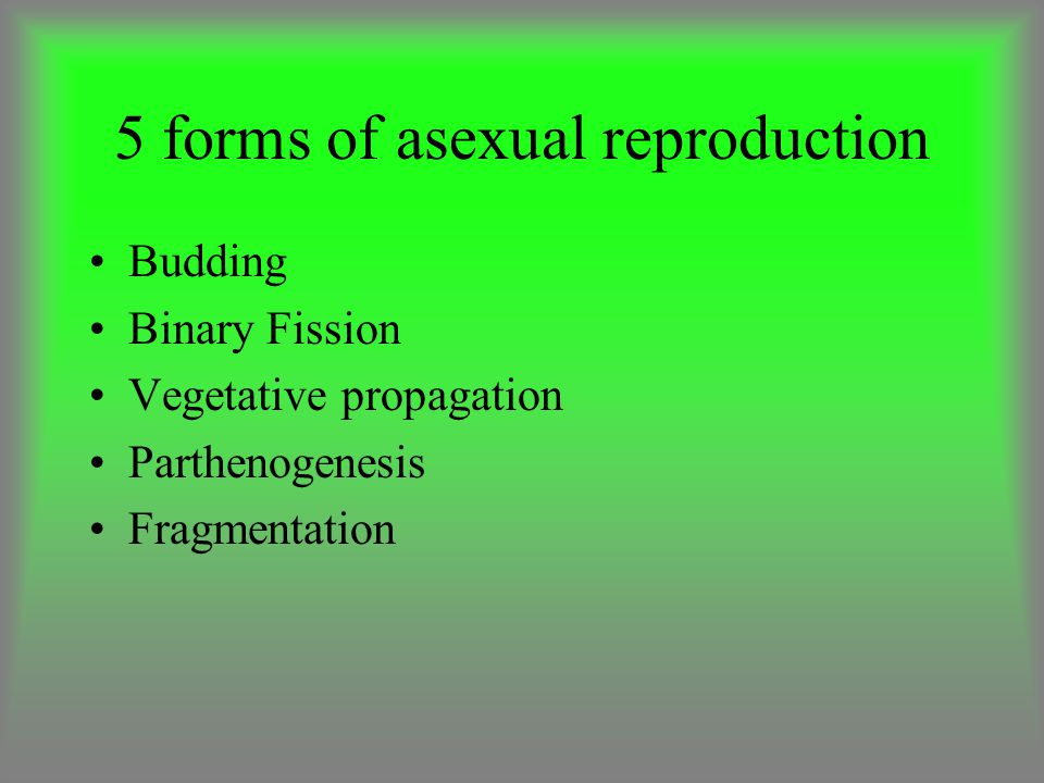 5 forms of asexual reproduction
