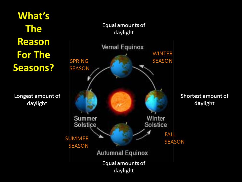 What's The Reason For The Seasons