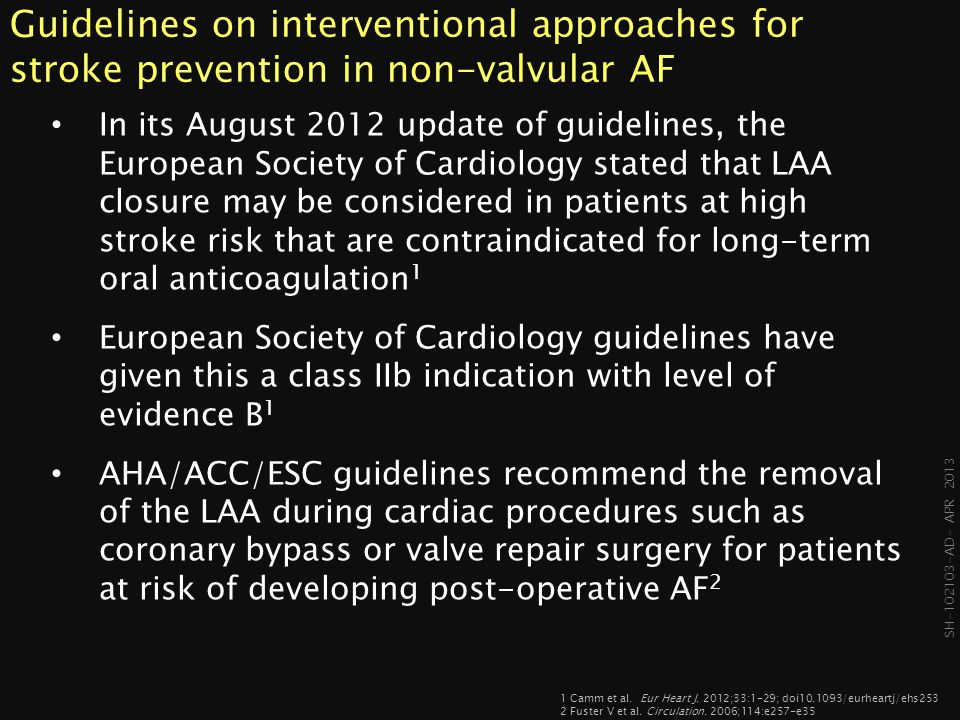 Guidelines on interventional approaches for stroke prevention in non-valvular AF