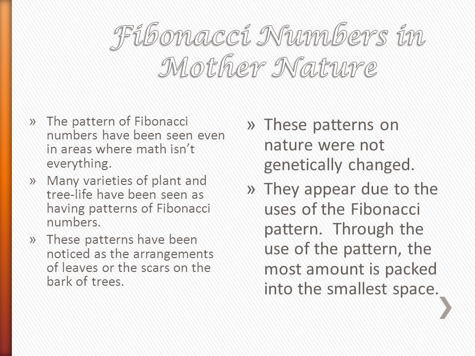 Fibonacci Numbers in Mother Nature