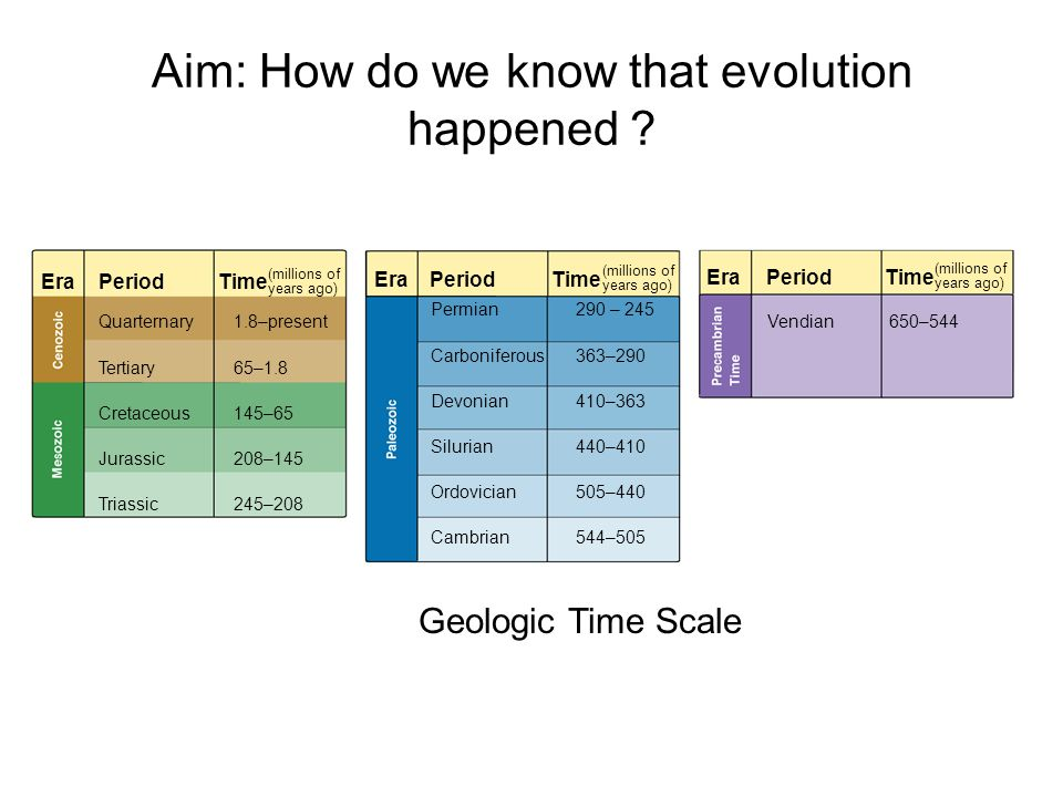 Aim: How do we know that evolution happened