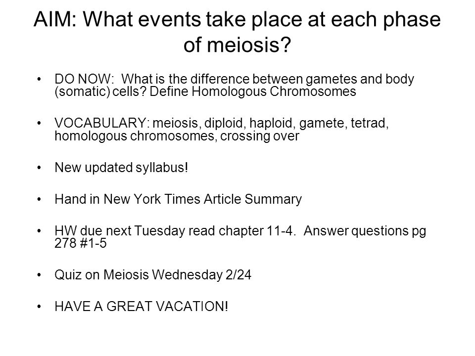 AIM: What events take place at each phase of meiosis