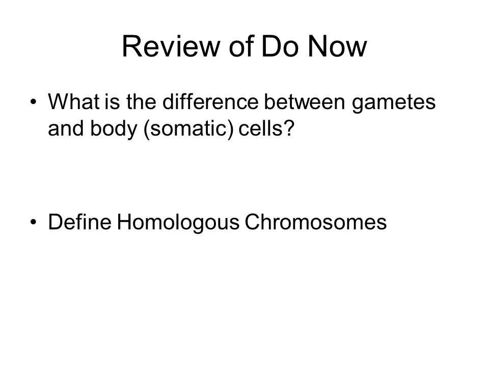 Review of Do Now What is the difference between gametes and body (somatic) cells.