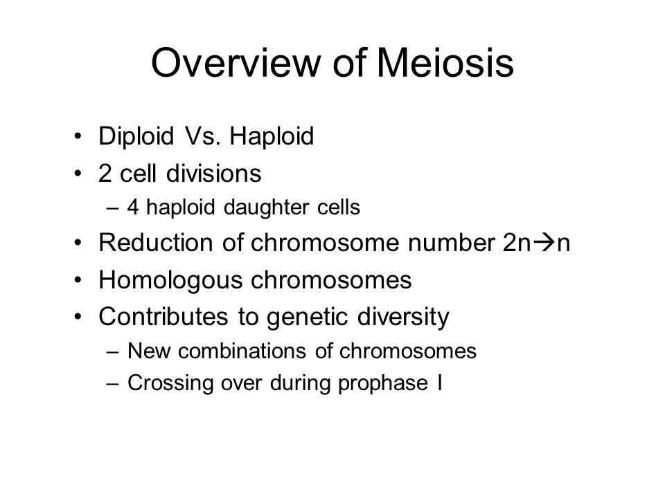 Overview of Meiosis Diploid Vs. Haploid 2 cell divisions