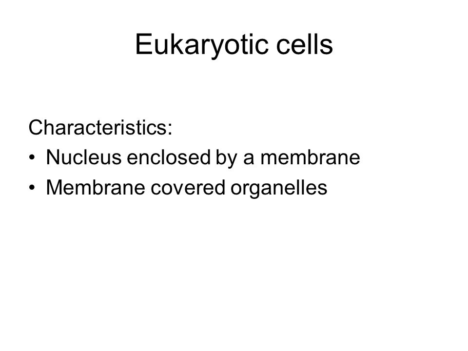 Eukaryotic cells Characteristics: Nucleus enclosed by a membrane