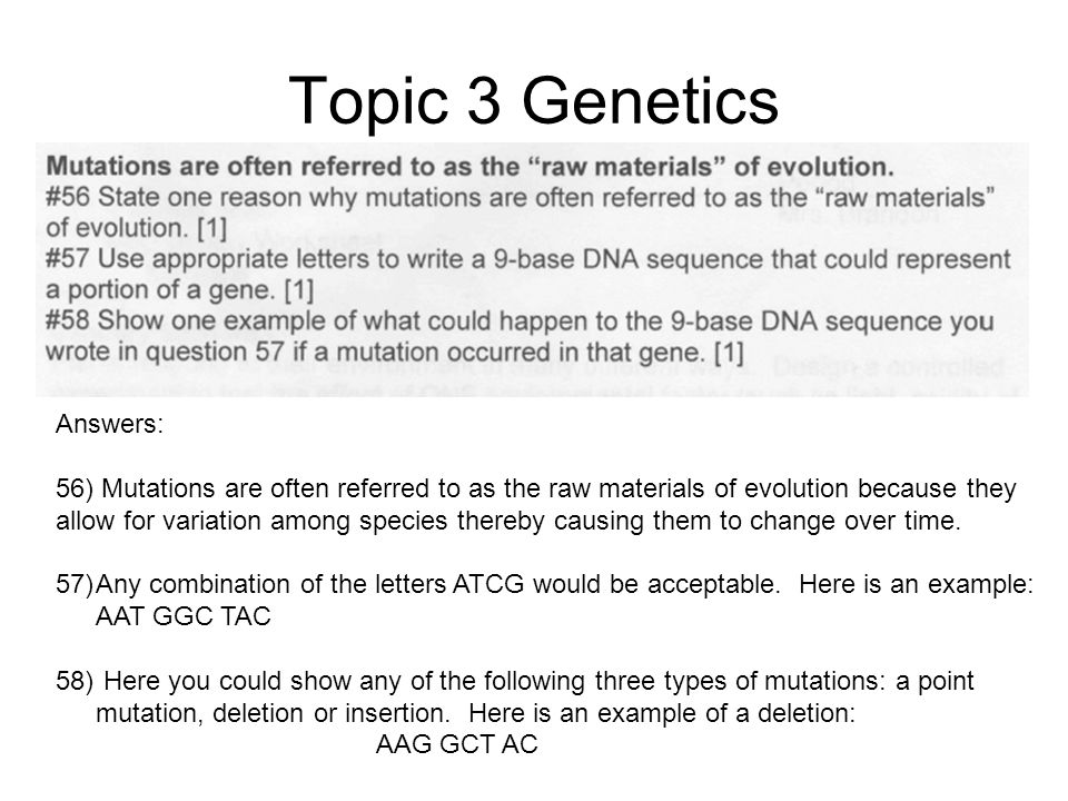 Topic 3 Genetics Answers: