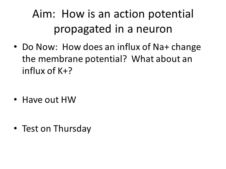 Aim: How is an action potential propagated in a neuron