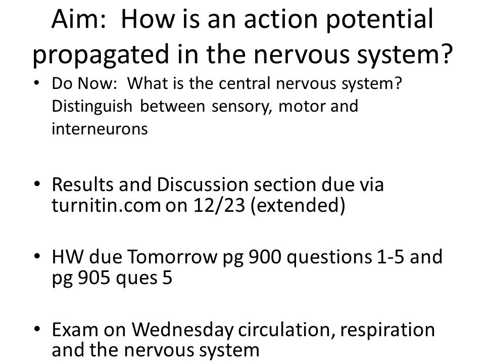 Aim: How is an action potential propagated in the nervous system