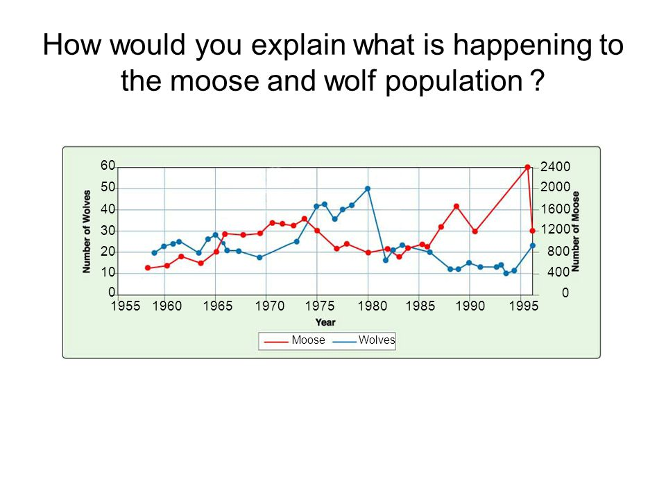 Figure 5-7 Wolf and Moose Populations on Isle Royale