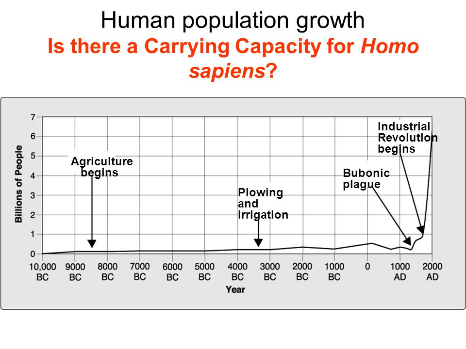 Human population growth Is there a Carrying Capacity for Homo sapiens