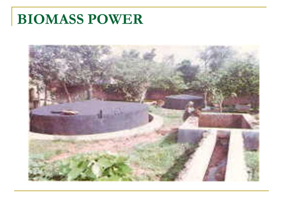 BIOMASS POWER