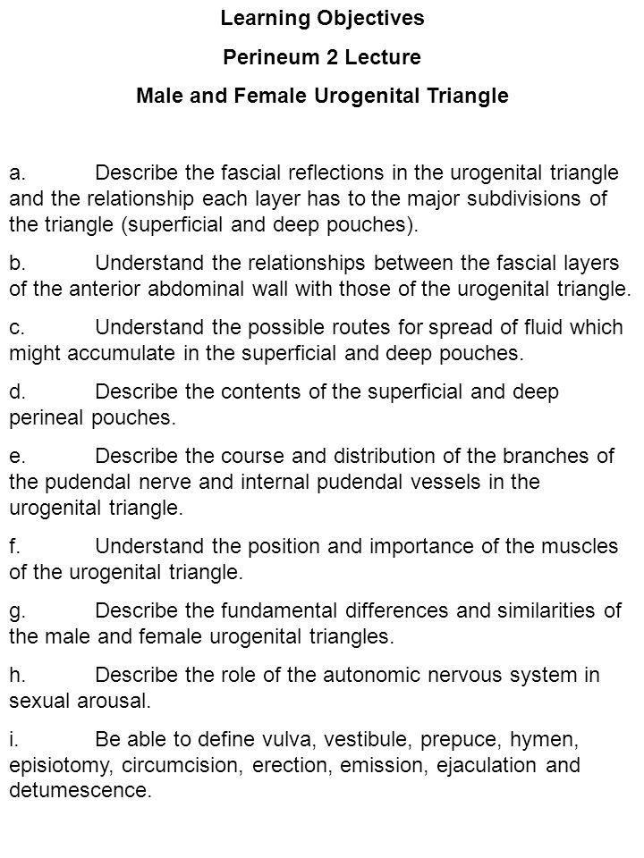 Male and Female Urogenital Triangle