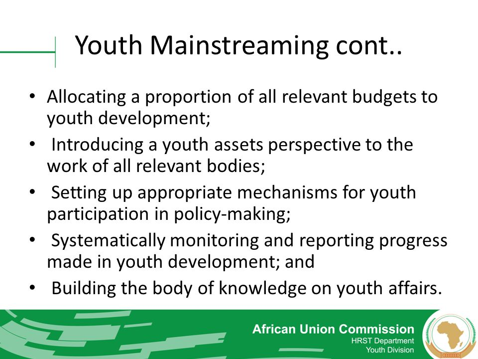 Youth Mainstreaming cont..